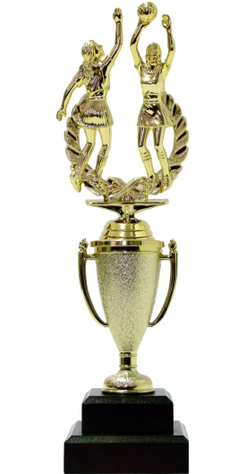 Netball Double Action Trophy 295mm
