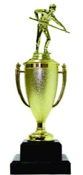 Pool Male Trophy 330mm