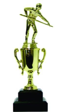 Pool Male Trophy 270mm