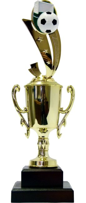 Soccer Sport Scene Trophy 310mm
