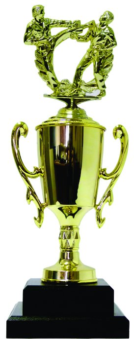 Karate Male Trophy 365mm