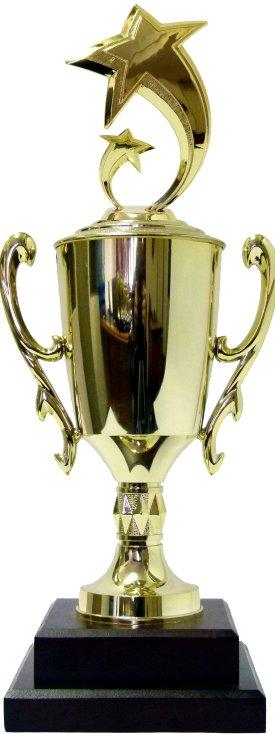 Astro Star Trophy 445mm
