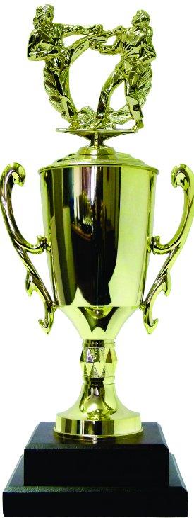 Karate Male Trophy 405mm