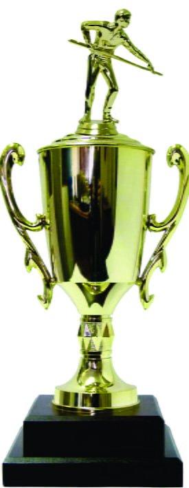 Pool Male Trophy 410mm
