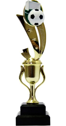 Soccer Sport Scene Trophy 250mm