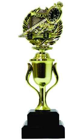 Swimming Wreath Trophy 255mm