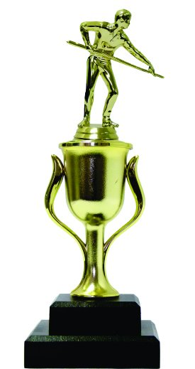 Pool Male Trophy 295mm