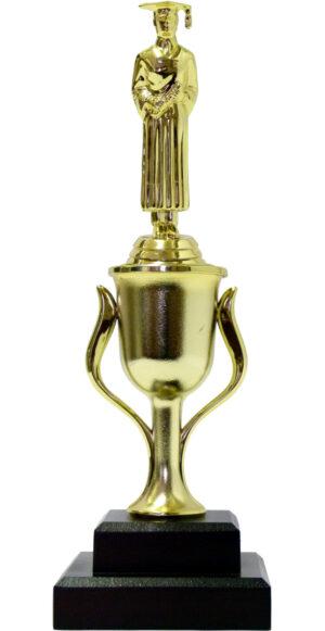 Graduate Male Trophy 290mm