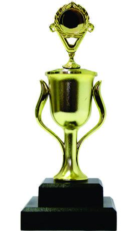 Holder Victory Trophy 220mm