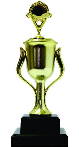 Holder Victory Trophy 260mm