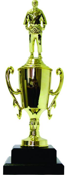 Judo Male Trophy 370mm