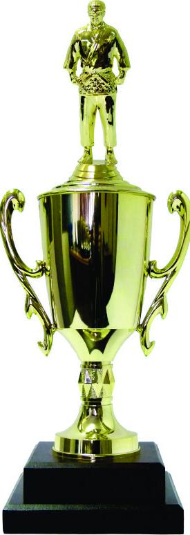 Judo Male Trophy 410mm