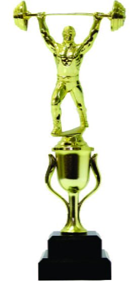 Weight Lifter Male Trophy 290mm