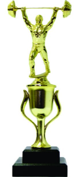 Weight Lifter Male Trophy 310mm
