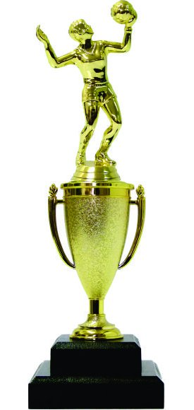 Volleyball Female Trophy 290mm