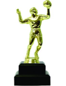 Volleyball Male Trophy 180mm