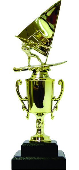 Wind Surfer Trophy 310mm