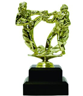 Karate Female Trophy 165mm