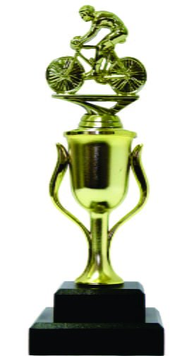 Cycling Male Trophy 250mm