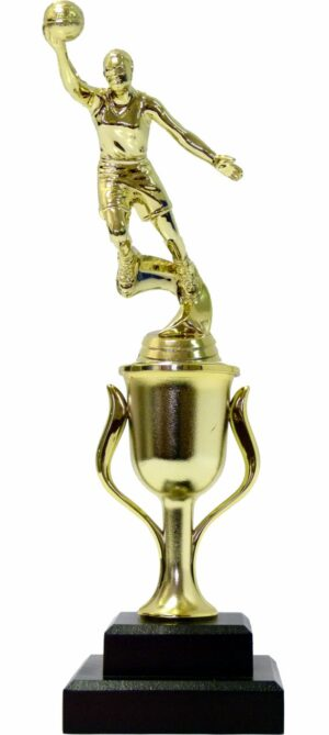 Basketball S/D Female Trophy 310mm