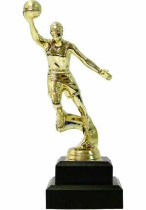 Basketball S/D Female Trophy 200mm