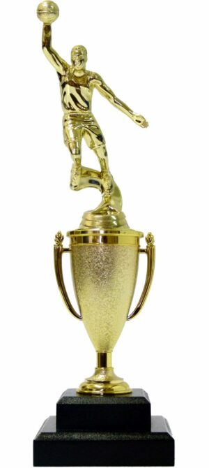 Basketball S/D Male Trophy 310mm