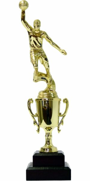 Basketball S/D Male Trophy 290mm