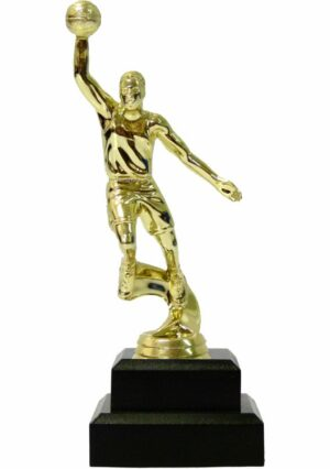 Basketball S/D Male Trophy 200mm