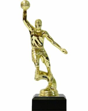 Basketball S/D Male Trophy 175mm