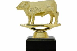 Hereford Steer Trophy 100mm