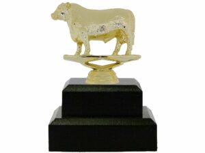 Angus Bull Trophy 125mm