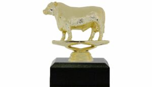 Angus Bull Trophy 100mm