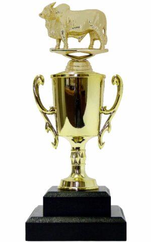 Brahma Bull Trophy 240mm