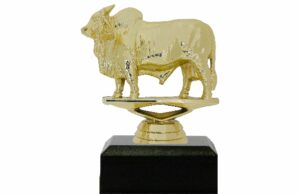 Brahma Bull Trophy 100mm
