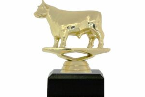Dairy Bull Trophy 100mm