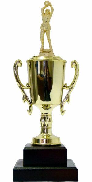 Netball Trophy 315mm