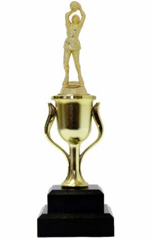 Netball Trophy 255mm