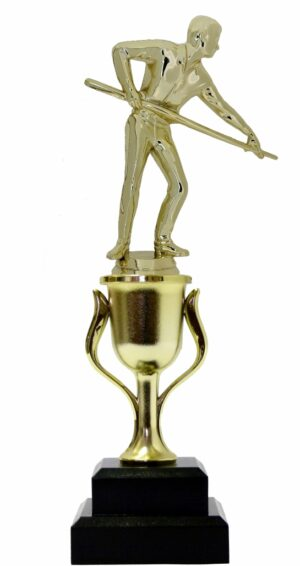 Pool Male Trophy 270mm