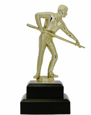 Pool Female Trophy 170mm
