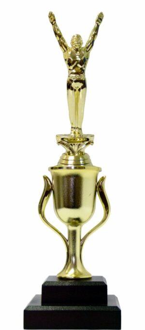 Gymnastics Male Trophy 315mm