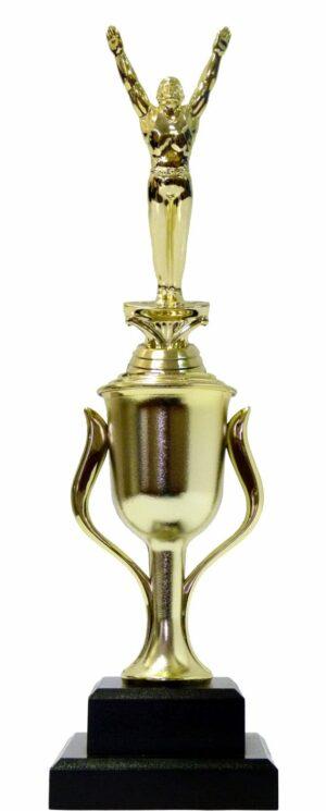 Gymnastics Male Trophy 355m