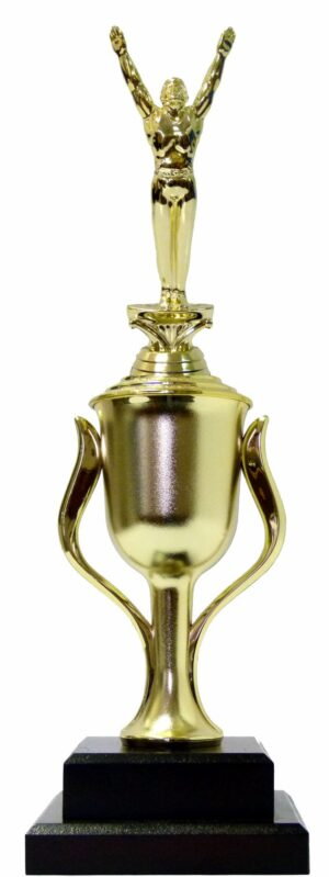 Gymnastics Male Trophy 395mm