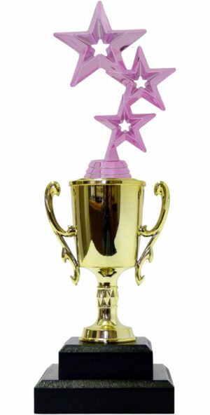 3 Stars Trophy PINK 315mm