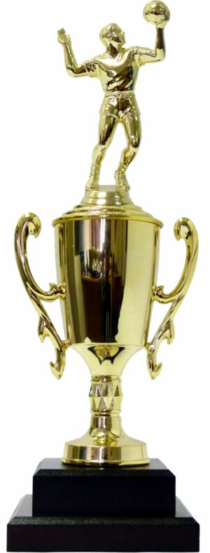 Volleyball Male Trophy 370mm