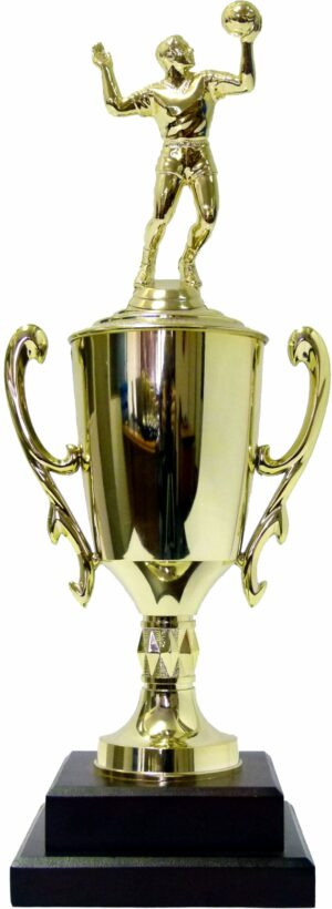 Volleyball Male Trophy 410mm
