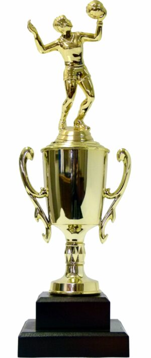 Volleyball Female Trophy 330mm
