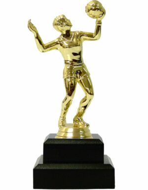 Volleyball Female Trophy 180mm