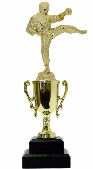 Karate Male Trophy 290mm