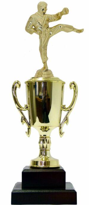 Karate Male Trophy 350mm