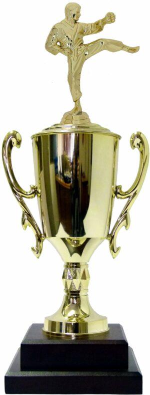 Karate Male Trophy 420mm